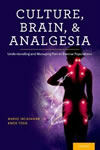 Culture, Brain, and Analgesia
